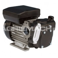110v Electric Fuel Transfer Pumps products