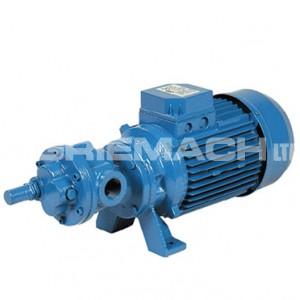 Self Priming Gear Electric Fuel Transfer Pump